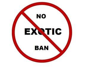 real no ban badge