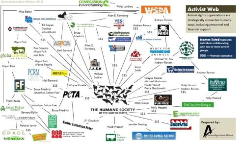 Activist map print screen final