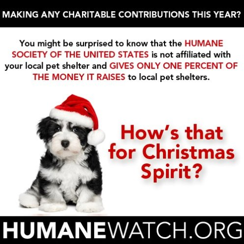 humanewatch christmas card - Humane Society Christmas Cards