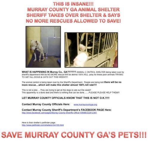 Mueey County sheriff
