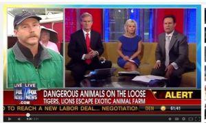Media-dangerous animals