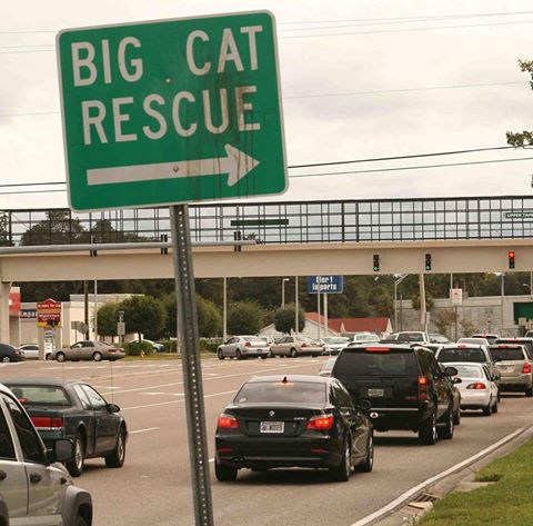 Big Cat Rescue direction sign