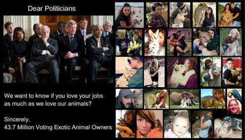 Dear Politcians