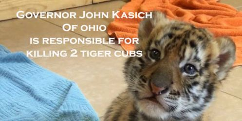 John Kasich petition photo