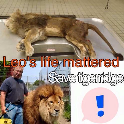 Leos life mattered