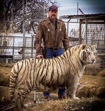 joe-and-a-tiger-elegant