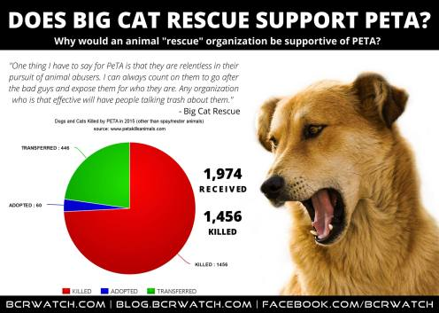 bcr-supports-peta